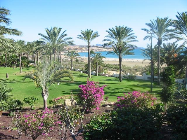 Penthouse next to sea (100m.) in Costa Calma with wonderful palm and seaviews from huge terrace in a nice and quiet state Fully equipped for 2-4 prs.